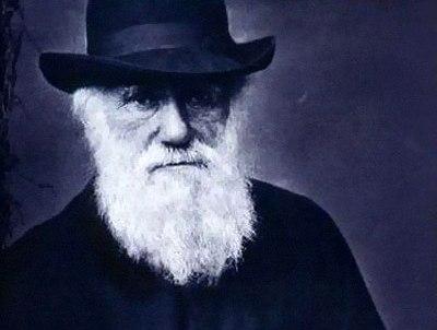 Ч. Дарвин